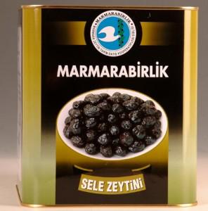 qa-with-hidamet-asa-chairman-of-turkish-olive-giant-marmarabirlik
