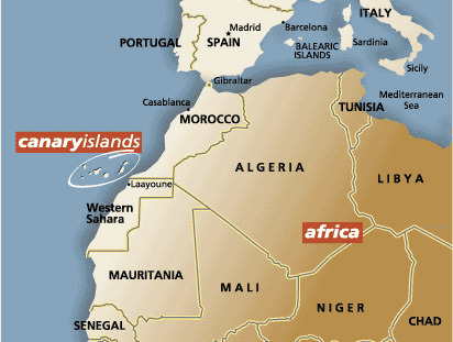 new-olive-oil-production-in-the-canaries