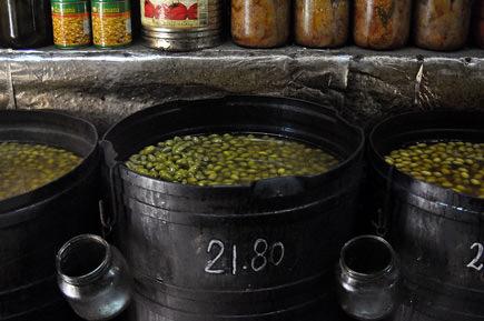 the-olive-merchant