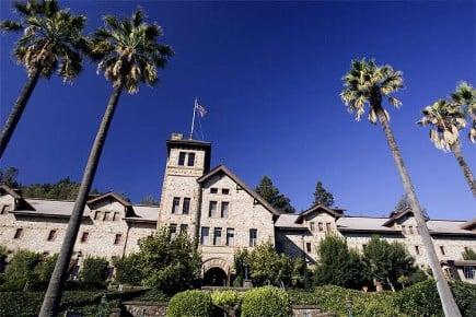 food-industry-pros-attend-napa-valley-seminar-on-olive-oil-quality