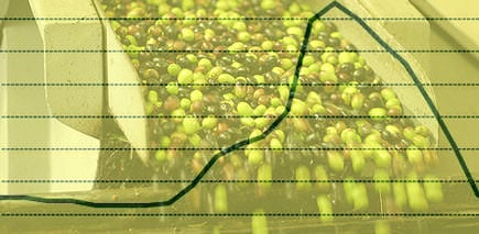 price-for-italian-extra-virgin-olive-oil-drops-to-09-levels