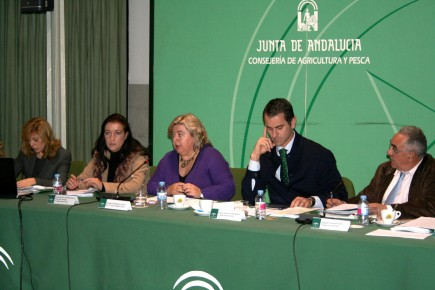 andalusia-announces-working-group-on-olive-oil-quality-standards-reunionconsectoroleicola2