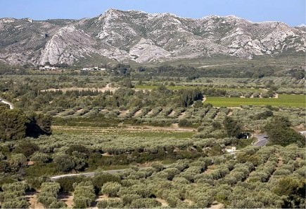 cooperative-run-by-volunteers-preserves-a-provencal-tradition