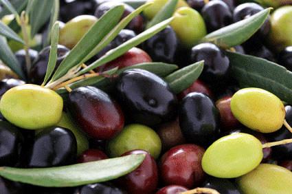 olive-varietals-some-interesting-peculiarities