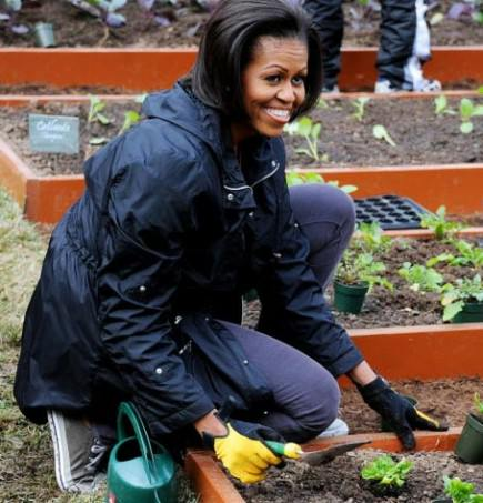 michelle-obama-awarded-a-1400-yearold-olive-tree