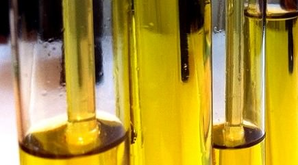 experts-in-olive-oil-authentication-called-to-madrid-workshop