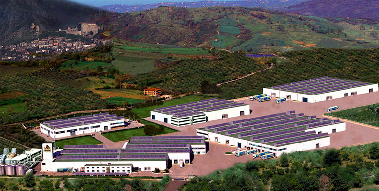 italian-growers-sidelined-while-dante-project-gets-public-funding