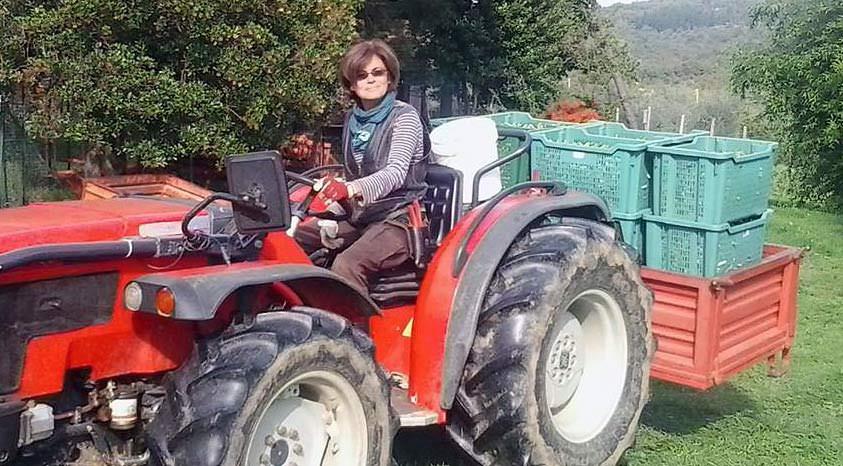 organic-farmers-cautiously-optimistic