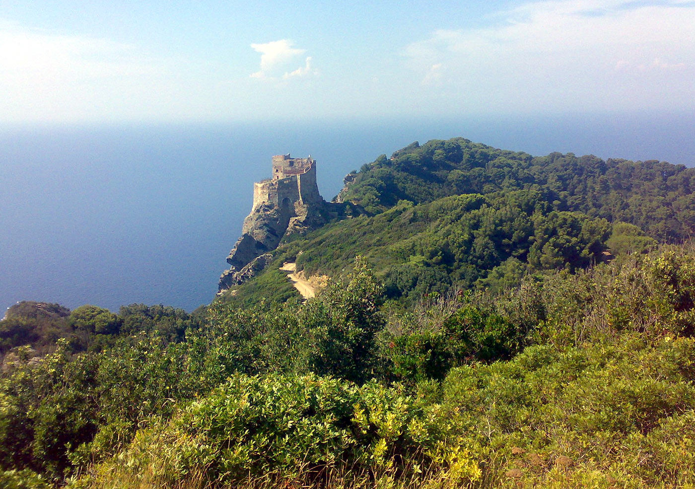 doing-hard-time-in-italys-last-island-prison-means-making-olive-oil