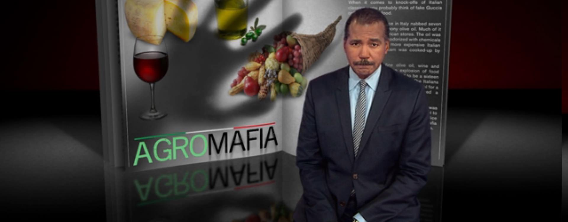 Image result for pics of olive oil in mafia trade